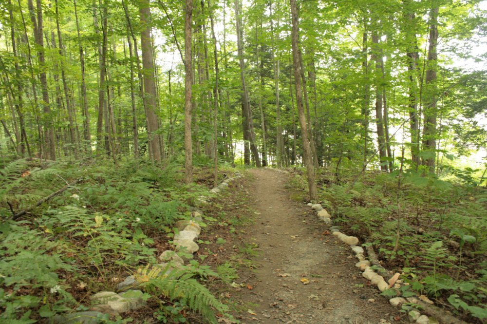 A Walking Trail at the Meditation Center
